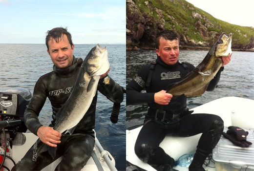 SPEARFISHING IN IRELAND